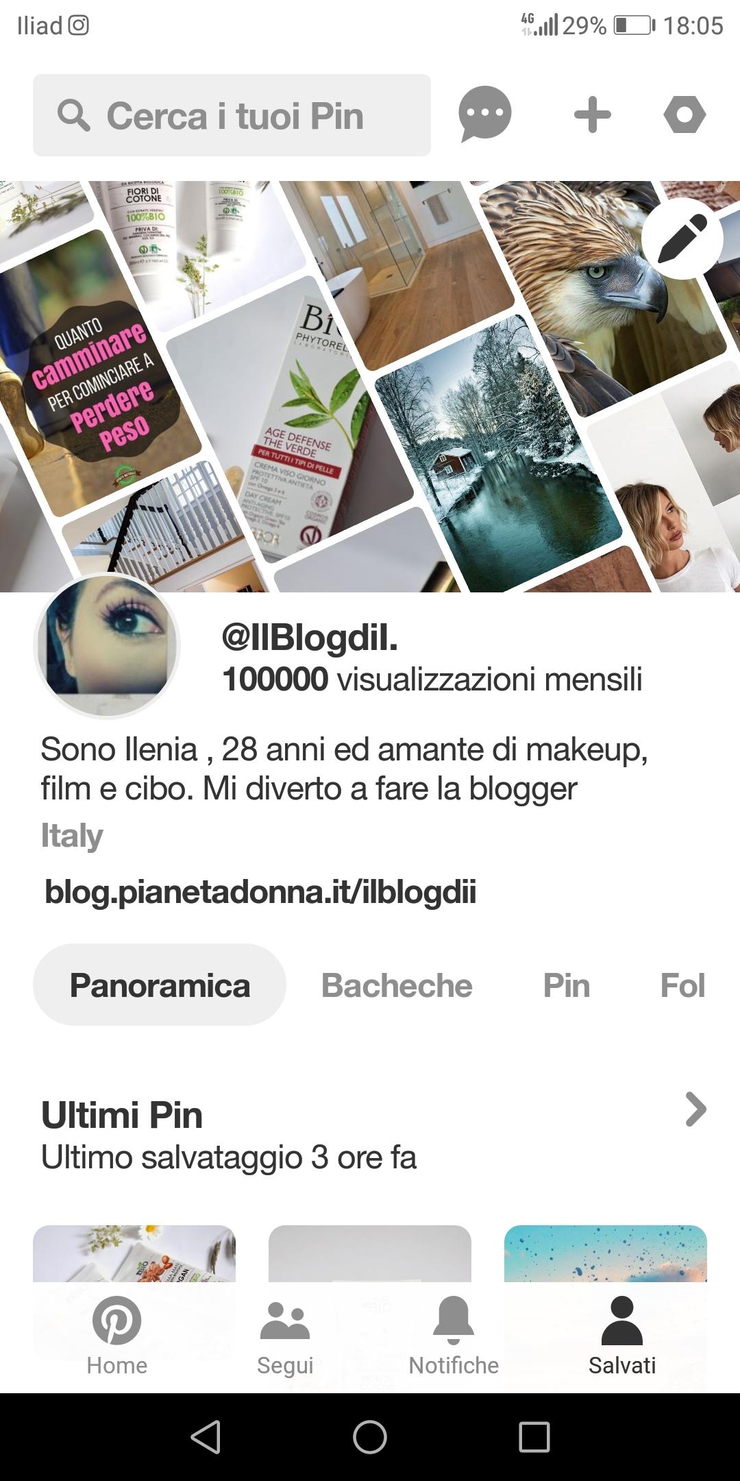 Schermata Pinterest